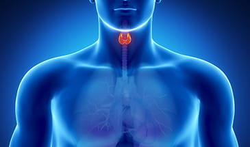 Clinical Practice Guidelines for the Management of Thyroid Disorders